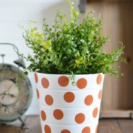 Polka Dot House Plant Pot