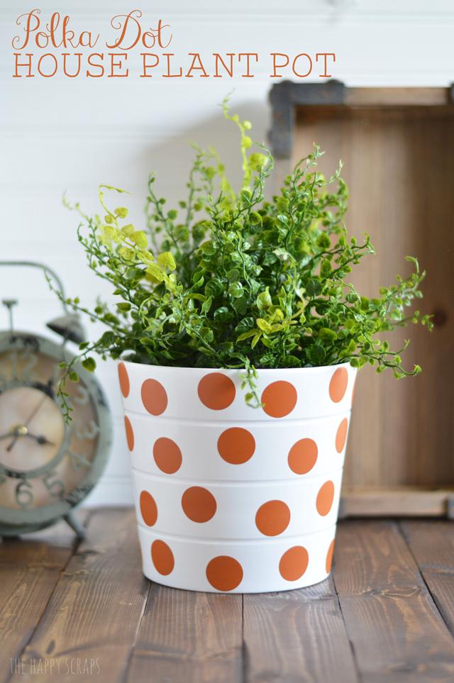 polka-dot-house-plant-pot