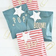 Fireworks Goodie Bags for Kids