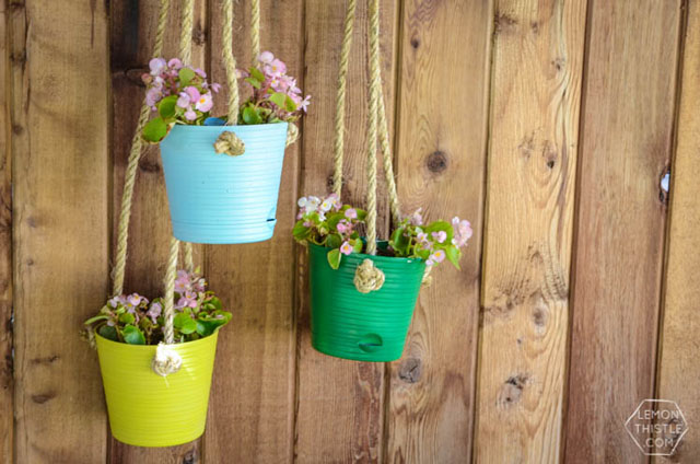 hanging-plants-1507124