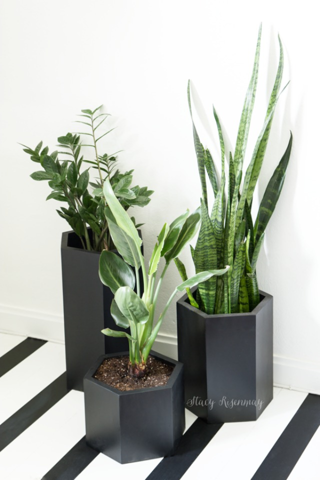 black-hexagon-planters