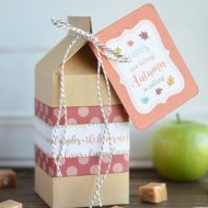 Caramel Apple Autumn Gift