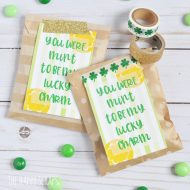 "You Were ""Mint"" to be My Lucky Charm Treat Bags"
