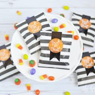 Trick or Treat Mini Gift Bags